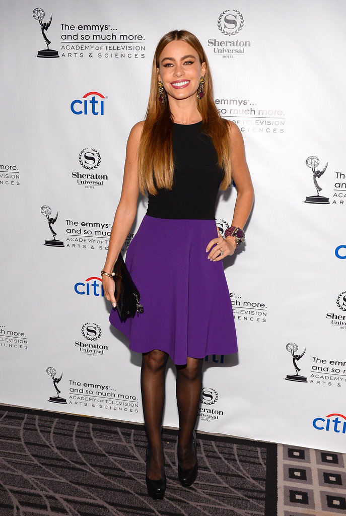 Sofia Vergara wore a black and purple dress.