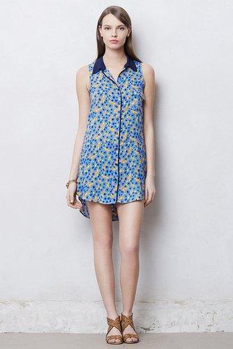Collared Cornflower Dress