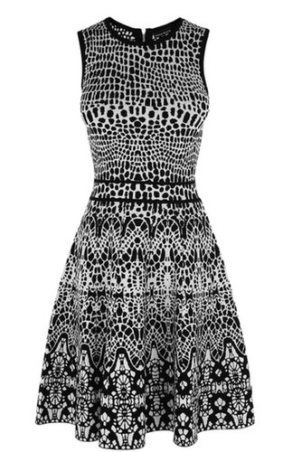 Lace Jacquard Knitted Skater Dress