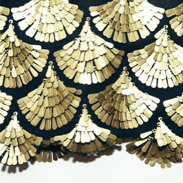 Altuzarra's scalloped gold beading was ready for its close-up. Source: Instagram user altuzarrastudio