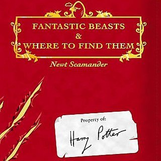 Harry Potter Spinoff Movie Info