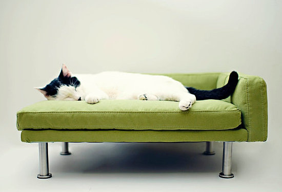 With memory foam and bolsters, this modern cat bed ($145) might just be superior to your own bed.