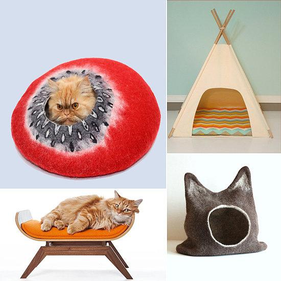 Cat Nap: 14 Beds For Your Favorite Feline