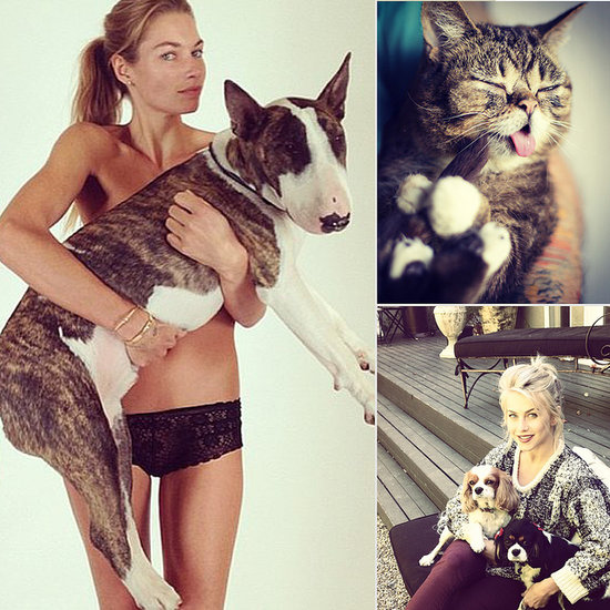 Welcome Fall With Celebrities and Their Furry Friends