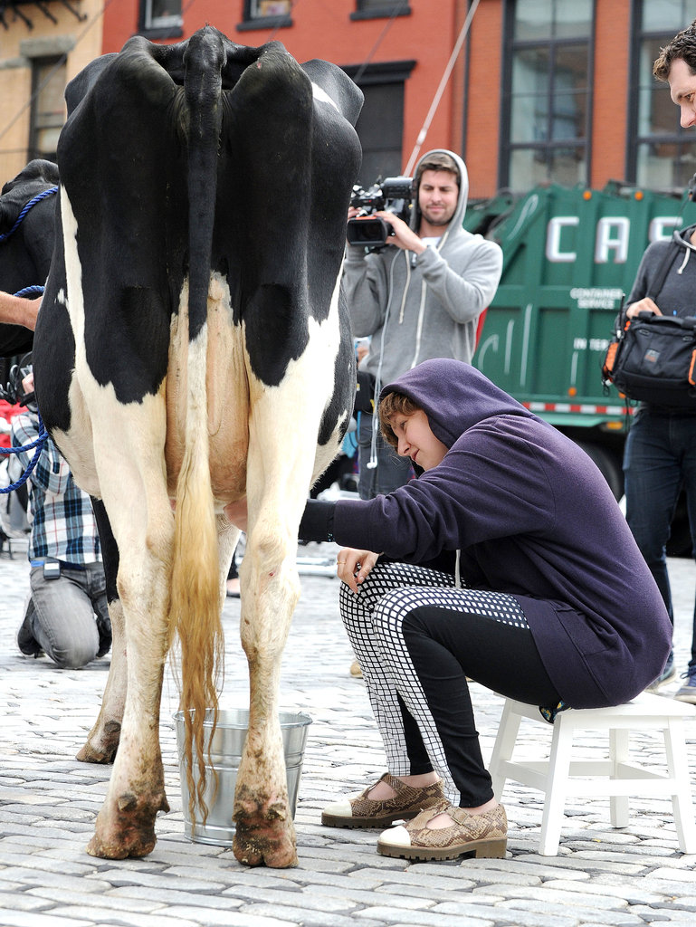 Lena Dunham tried her hand at cow milking.