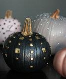 Edgy Chic Pumpkins