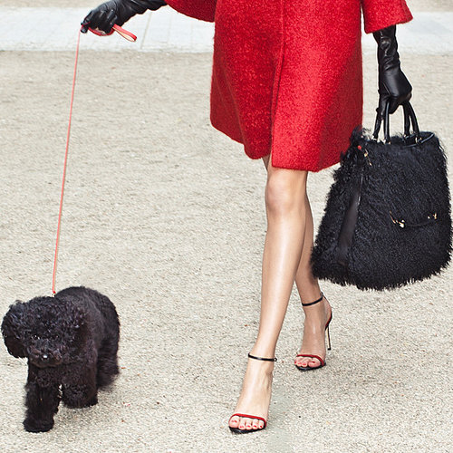 Carolina Herrera Gaspar Dog Bags