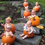 When the pumpkin picture opp you envisioned turns into a cry fest with seven babies.  Source: Instagram user jillmawer