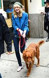 Emma Stone walked her boyfriend Andrew Garfield's dog in NYC in May 2013.