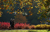 Visitors enjoyed a pretty Fall day at the Royal Botanic Gardens in London, England.