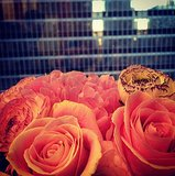 The view from InStyle's office was made all the better with flowers from Missoni. Source: Instagram user instylemelissa