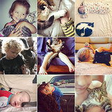Kiddy Cats: The Cutest Snaps of Kids and Kittens