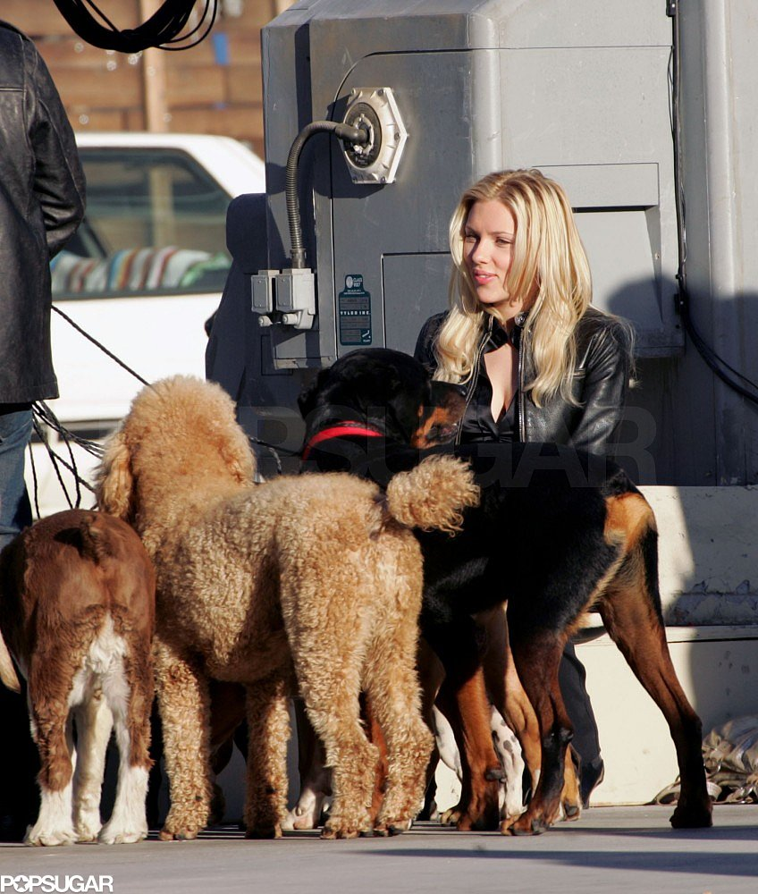 Scarlett Johansson palled around with some pups while on the set of The Island in 2004.