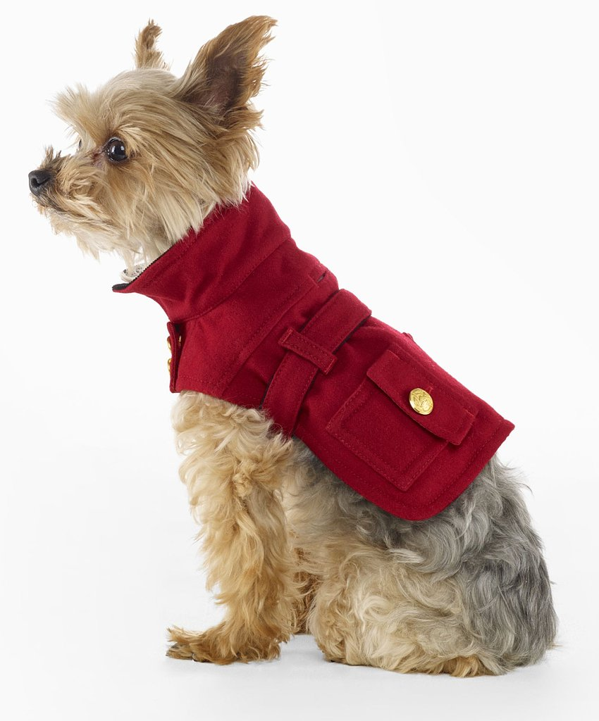 Far more sophisticated than some silly dog sweater, this Ralph Lauren wool riding jacket ($67, originally $95) – with its velvet trim, crested gold buttons, and double-breasted silhouette – makes one thing clear: this pup came to play.
