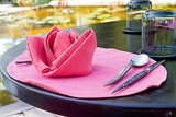Use Cloth Napkins