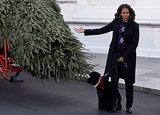 Michelle Obama presented the tree.