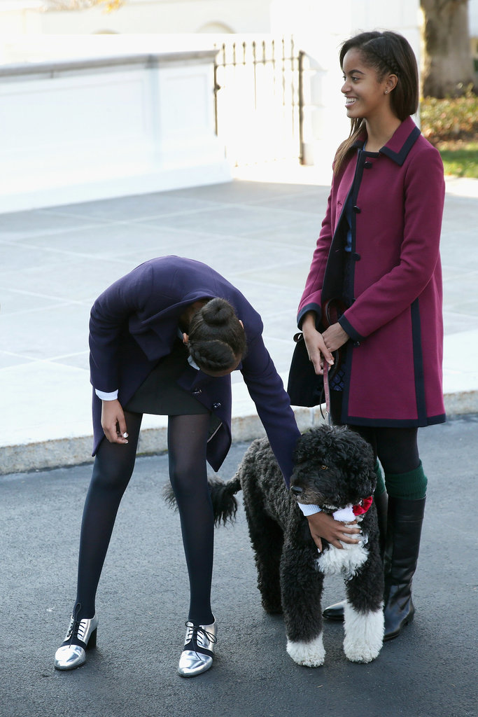 Sasha and Malia kept Bo company.