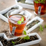Peppermint Tea Good For Weight Loss