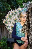 Picture-Perfect Peacock Costume