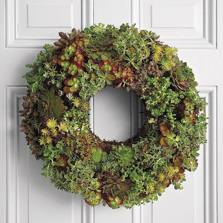 Create a different kind of hanging garden with this Living Succulent Wreath ($100). Just soak it regularly, and the wreath will continue to grow!