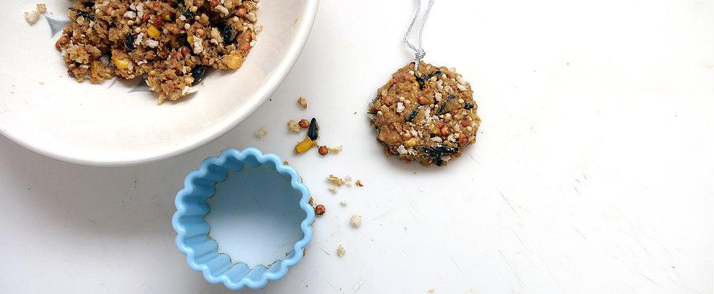 Homemade Sweet Treats For Your Wild Bird Friends