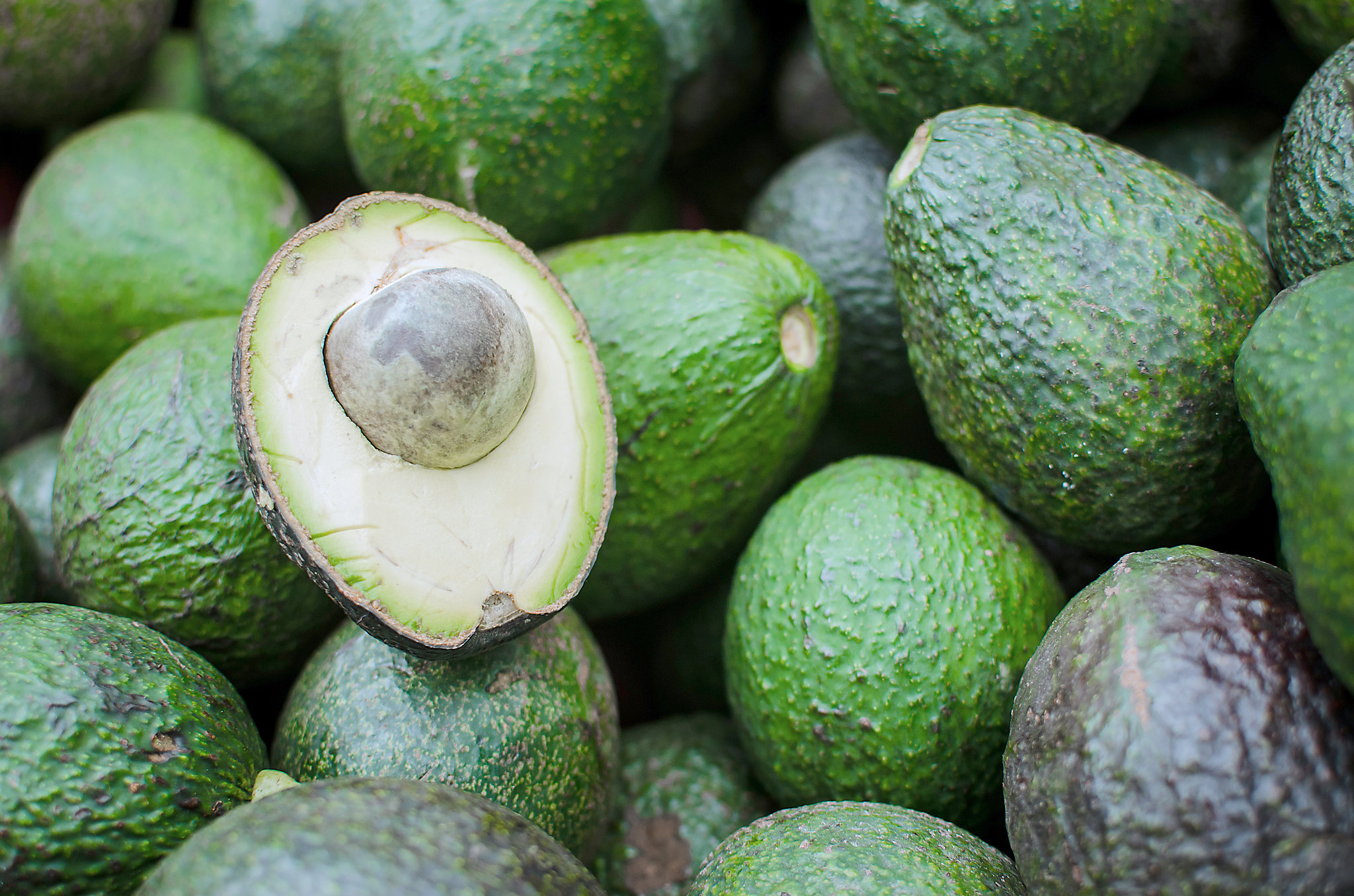 Avocados From Apples To Zucchini Your Seasonal Produce