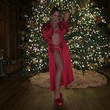 Mariah Carey took a sexy snap in front of her Christmas tree.  Source: Instagram user mariahcarey