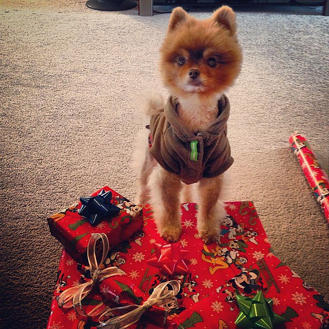 Presents, Please