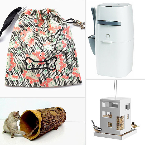 Our Favorite Pet Products of 2013