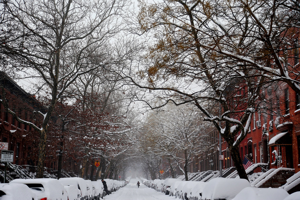 The Brooklyn streets — and cars — were blanketed in several inches of snow after the first night of the storm.