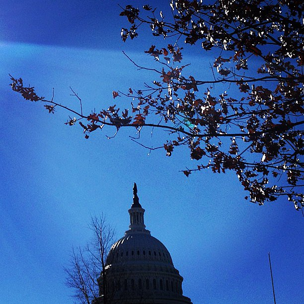 Gorgeous day in DC!