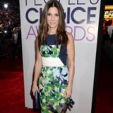 People's Choice Awards 2014 Red Carpet Dresses