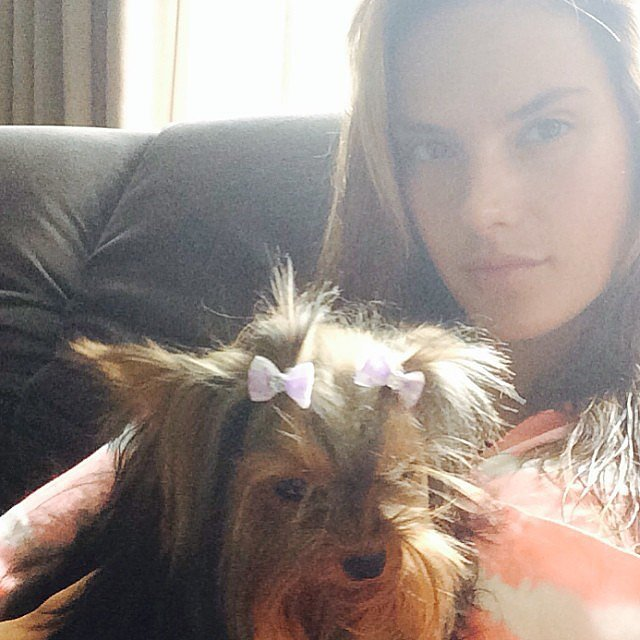 Alessandra Ambrosio cuddled with her dog — check out those tiny bows! Source: Instagram user alessandraambrosio