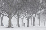 Snow piled up in Washington DC along the National Mall.