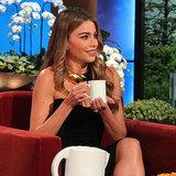 Sofia Vergara Interview on Ellen | February 2014