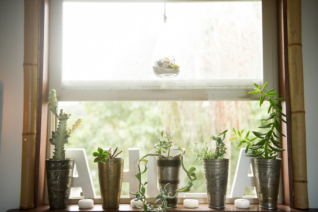 Almost no part of her home is untouched! Potted succulents dress up the windowsill, and bamboo moldings add a tropical vibe. Photo by Ashley Camper