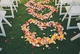 Rose Petal Ceremony Hearts
