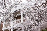 Ice covered the tree branches during a rare Winter storm in Summerville, SC.