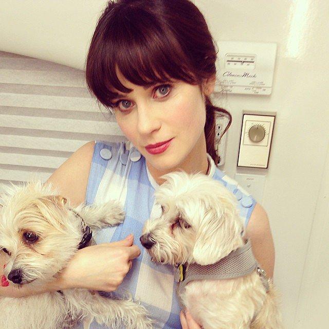 Zooey Deschanel cuddled with puppies for a day of love. Source: Instagram user zooeydeschanel