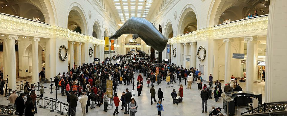 The Field Museum — Chicago
