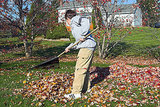 Rake the Leaves