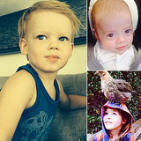Harper, Kaius, Luca, and More: Celeb Parents' Best Photos of the Week