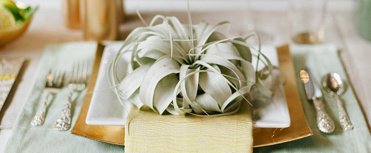 Something Green? 7 Ways to Use the Fresh Hue at Your Wedding