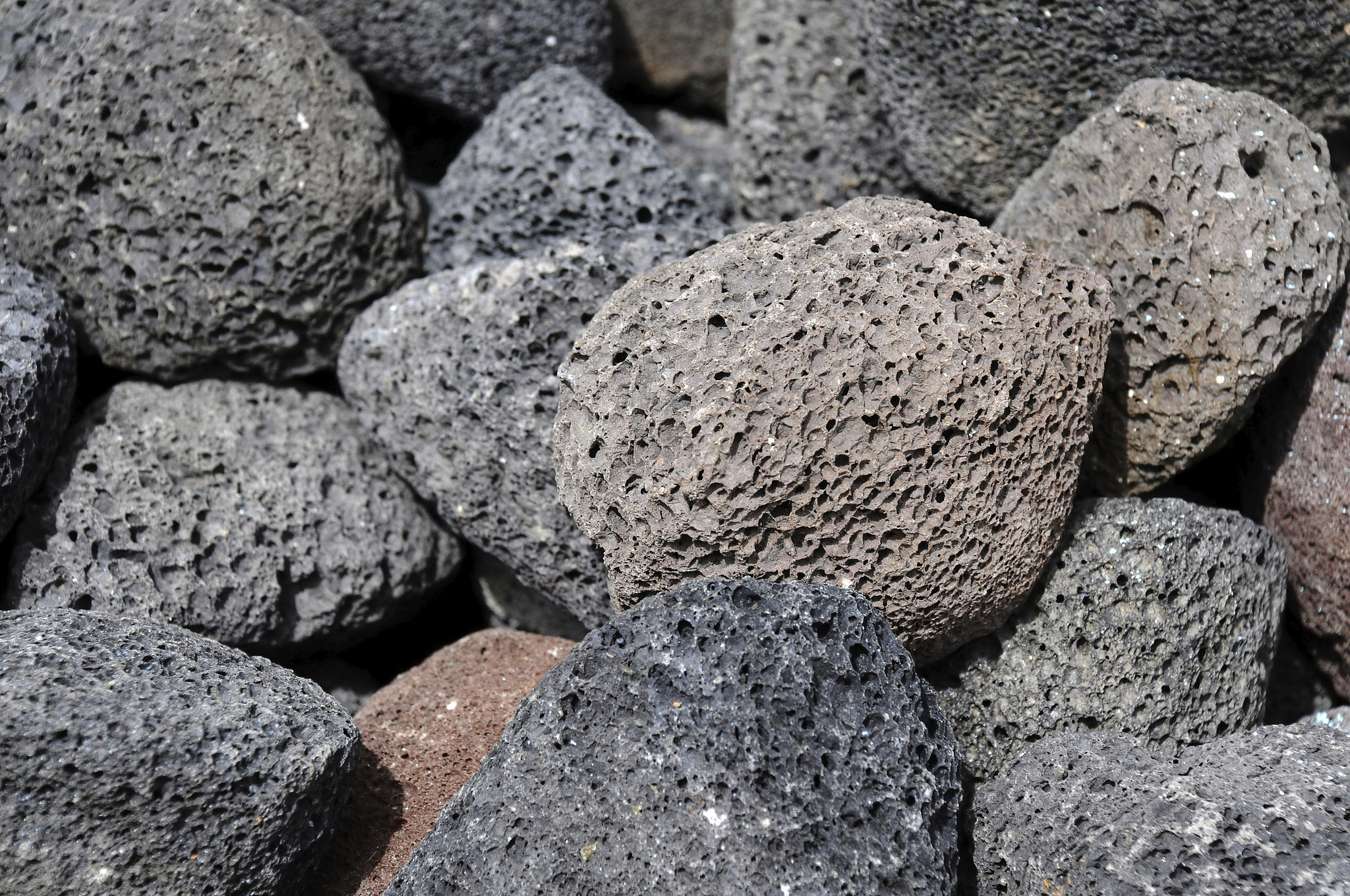 Sf Street Cleaning >> Spring-Clean: Your Pumice Stone | Spring-Clean: How to ...