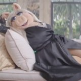 This Little Piggy Is Launching a Luxury Lifestyle Brand!