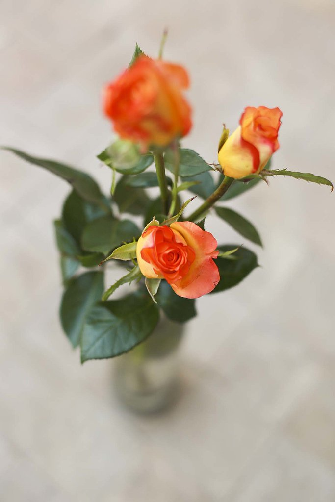 One thing that I fell in love with at the Four Seasons was the abundance of burnt-orange roses. The smell is something I can still close my eyes and remember.