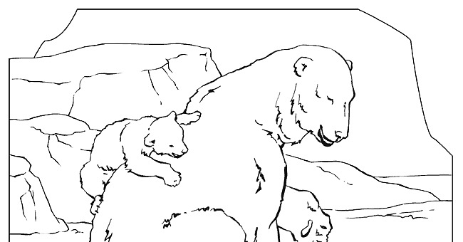 national geographic animal coloring pages - photo#12