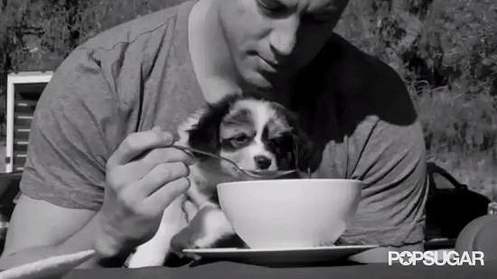 Channing Tatum Sharing His Food With a Puppy