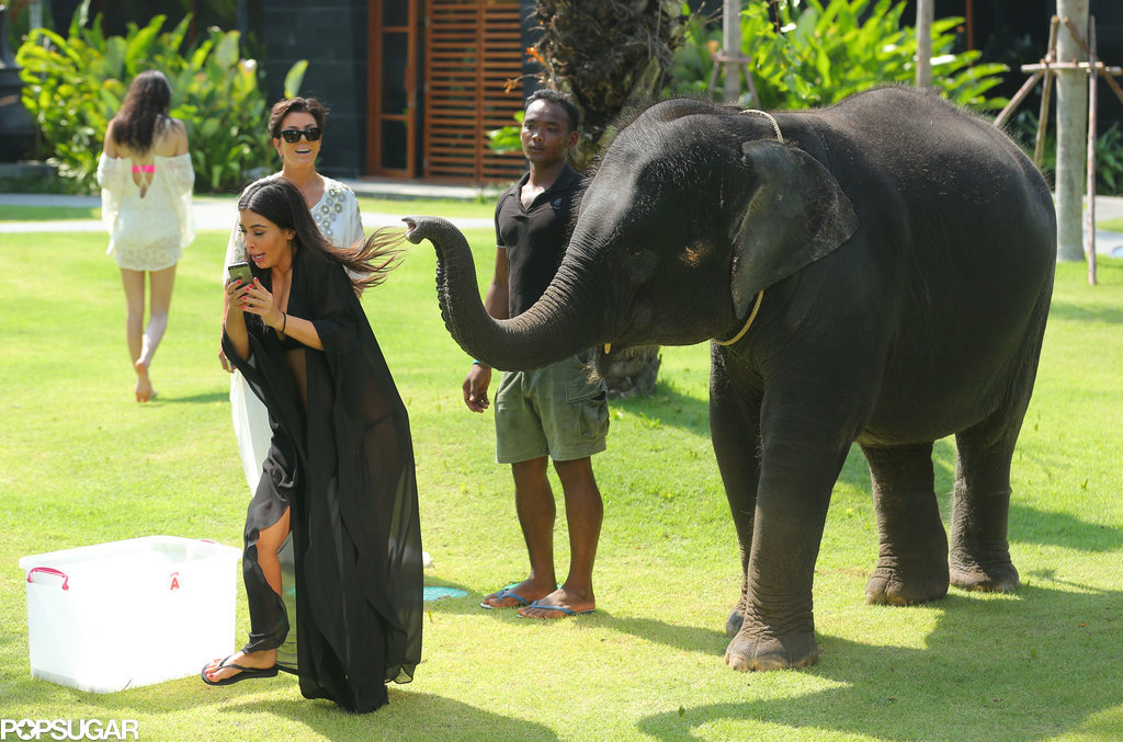 "Then the elephant was like, ""I said no photos!"""