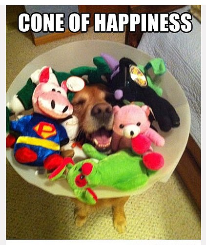 Cone of Happiness